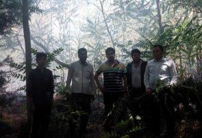 چهلمیر از آتش نجات یافت / دو هکتار پوشش جنگلی خاکستر شد