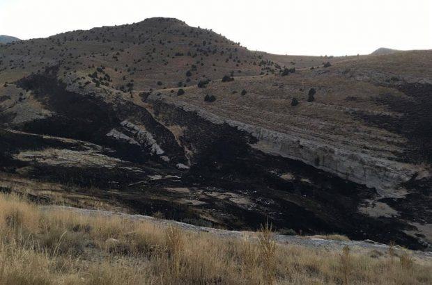 بیش از ۱۵ هکتار از مراتع پارک ملی تندوره درگز در منطقه علی بلاغ طعمه حریق شد