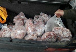 توقیف خودروی سواری حامل ۱۵۰ کیلوگرم گوشت مرغ منجمد در درگز